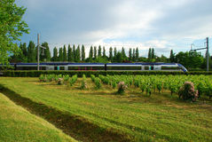Train in Motion through Green scenery, France Royalty Free Stock Photography
