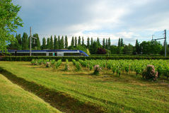 Train in Motion through Green scenery, France Royalty Free Stock Photos