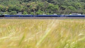 Train moving along wheat field stock footage