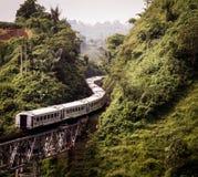 Train par la montagne image stock