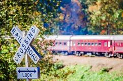 Train Passenger Car Of Great Smoky Mountains Railroad Royalty Free Stock Image