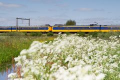 Train passes pasture in Hoogeveen, Netherlands Stock Photography