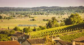 Train passes in the valley of Saint Emilion Royalty Free Stock Photo