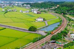 Train passing through green rice field Stock Photography