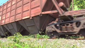 Train passing through the jungle. Old freight train passing through the jungle. Real time shot stock footage