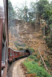 train. Photo image  with wild landscape and train Stock Images