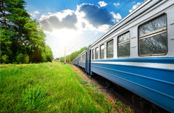 Train and pine forest Royalty Free Stock Photo