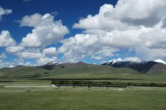 Train Plateau. Trains running on the Qinghai-Tibet Plateau Royalty Free Stock Photography