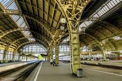 Train platforms at the Vitebskiy vokzal railway station.Russia. Stock Photo