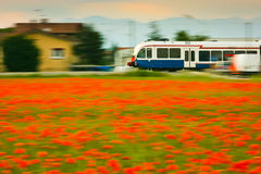 Train and poppies Stock Photos