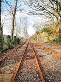 Train rail in a nature. Rusted train rail in a nature royalty free stock image