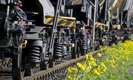 Train on railroad. Royalty Free Stock Photography