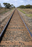 Train rails. In perspective view Royalty Free Stock Photography