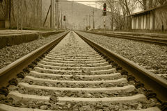 Train rails. In perspective view Royalty Free Stock Images