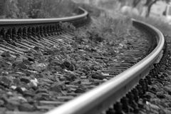 Train rails with rocks. And plants taking a curve black and white Royalty Free Stock Photo