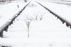 Train rails, track covered with snow during winter. Railway covered with fresh white snow. Transportation Stock Images