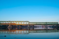 Train, railway bridge and duck. Train and railway bridge in the early cold sunny morning Stock Images