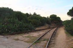 Train railway at sunset Stock Photo