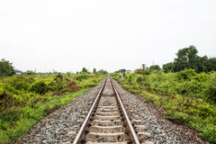 Train railway track in nature scene. Train railway in two sides way of green tree Royalty Free Stock Photos