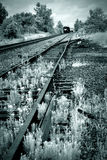 Train in railyard. Tinted black and white image of a train in a railyard Stock Photo