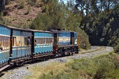 Train rapide de Nilgiri Photo stock