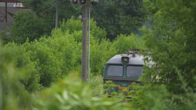 Train rides on the rails. shooting through the trees stock video