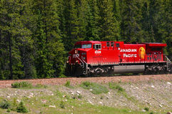 Train in Rocky Mountains Royalty Free Stock Photography