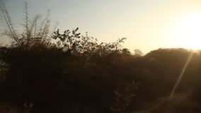 Train running through rural area stock video footage