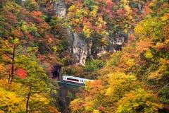 Train running into tunnel during autumn in Naruko gorge Tohoku r stock photos