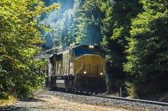 Train sortant des arbres Image libre de droits