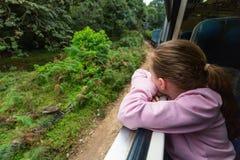 Train in Sri Lanka stock photos