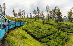 Train in Sri Lanka. Train ride from Ella to Kandy among tea plantations in the highlands of Sri Lanka royalty free stock image