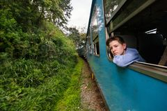 Train in Sri Lanka. Teenage boy enjoying train ride from Ella to Kandy among tea plantations in the highlands of Sri Lanka royalty free stock image