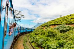Train in Sri Lanka. Young woman enjoying train ride from Ella  to Kandy among tea plantations in the highlands of Sri Lanka Stock Photography