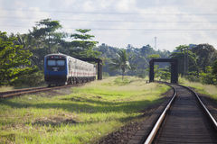 Train in srilanka Stock Photos