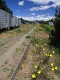 Train station. In Bariloche - Argentina stock photos