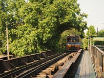 Tree tunnel and the train royalty free stock photos