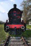 Train and steam locomotive Stock Photography
