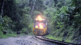 Twilight train passing. Train with switched lights moving in tropical forest by twilight stock video