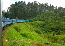 Train among the tea plantations. Sri Lanka royalty free stock image
