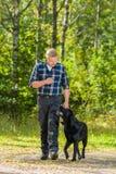 Train to heel. Dog owner trains his labrador retriever to heel stock photos