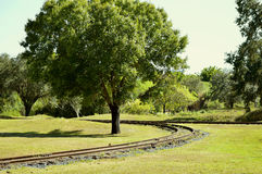 Train track around a tree. Train track going around a tree Stock Image