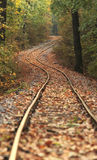 Train track in forest Stock Photography