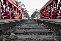 Train Track Made Of Wood, Metal And Stones On Red Bridge With Some Background Of Palm Trees Stock Photo