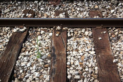 Train track with old wood planks. With cracks Stock Image