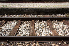 Train track with platform and red grass on them Stock Photography