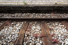 Train track with platform and red grass on them Stock Photos
