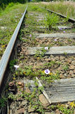 Train track 2. Train track with purple flowers Royalty Free Stock Images
