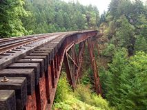 Train track or train bridge or trestle in the forest Royalty Free Stock Photography