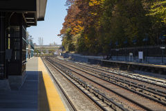 Train Track. On a weather fall stock photography